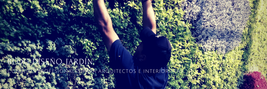 Jardín_Vertical_Profesional_México